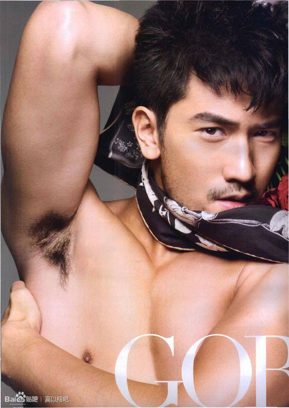 godfrey gao gay