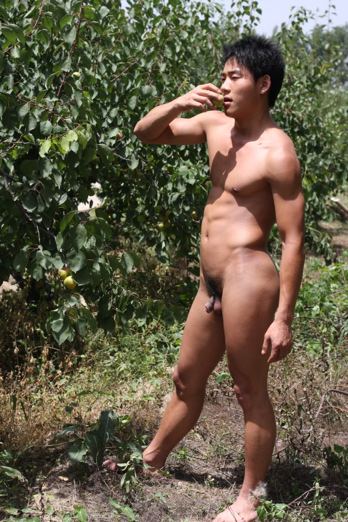chinese men models naked