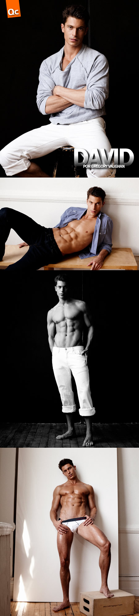 Greg Vaughan: David Pullman