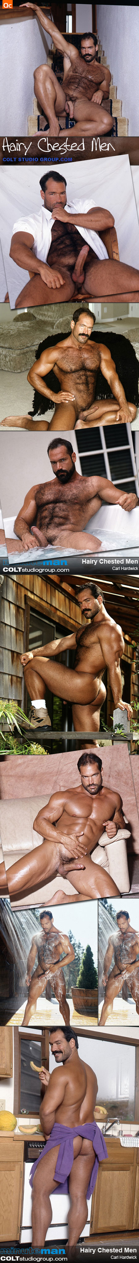 colt studio hairy chested men