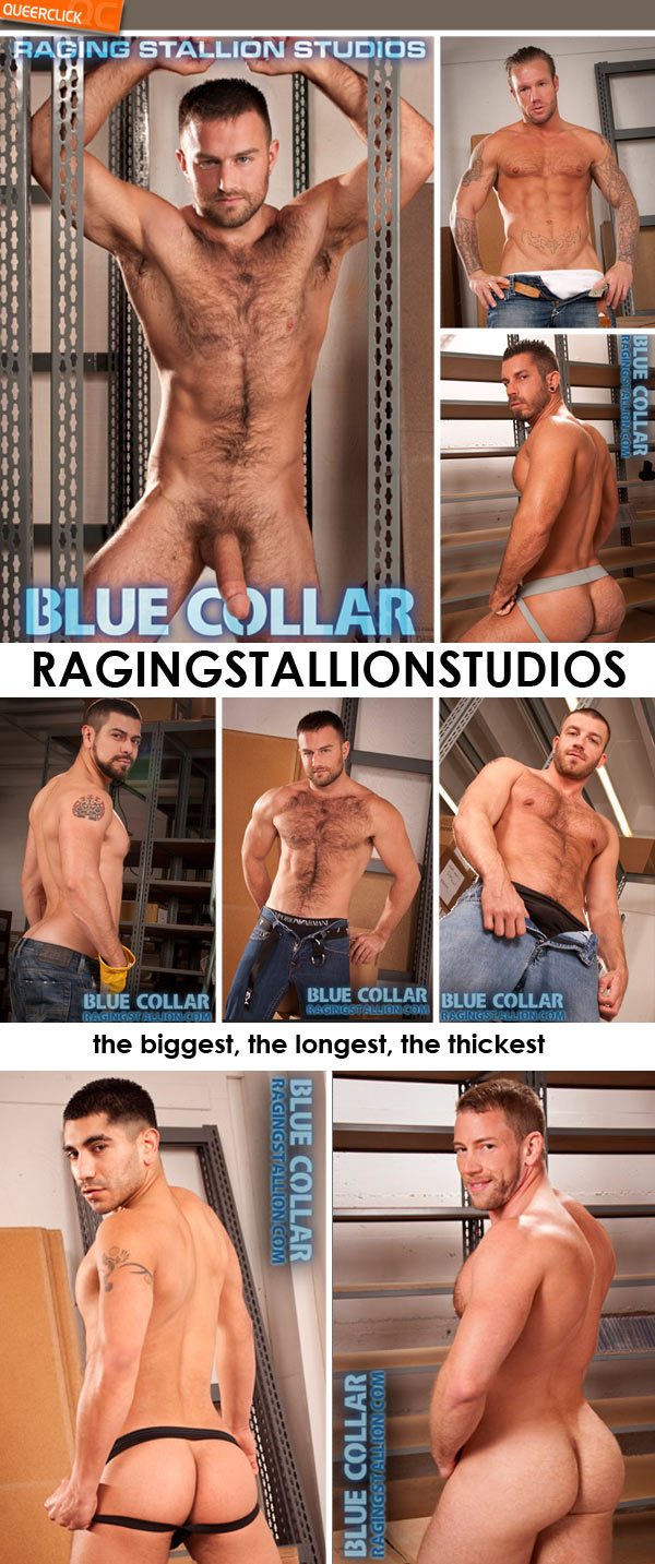 raging stallion blue collar