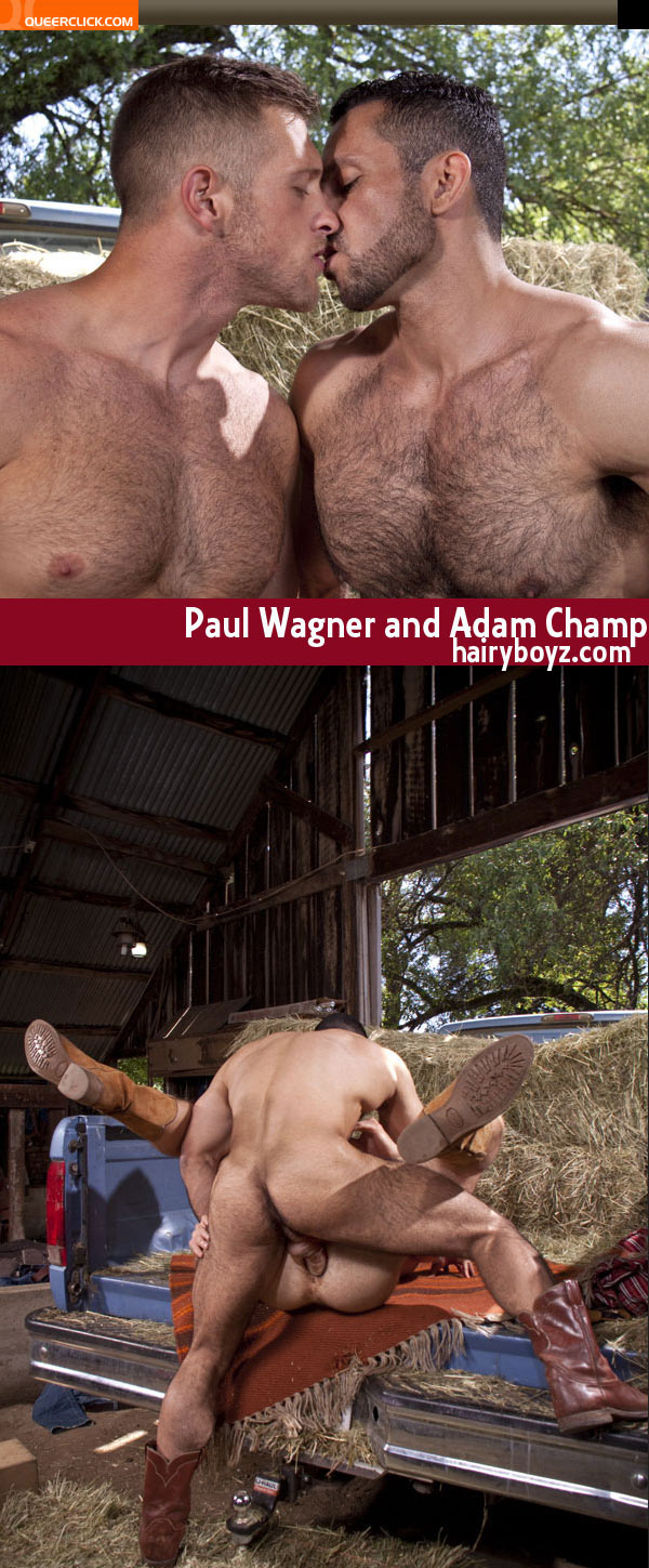 Adam Champ Gay Porn hairyboyz: paul wagner and adam champ - queerclick
