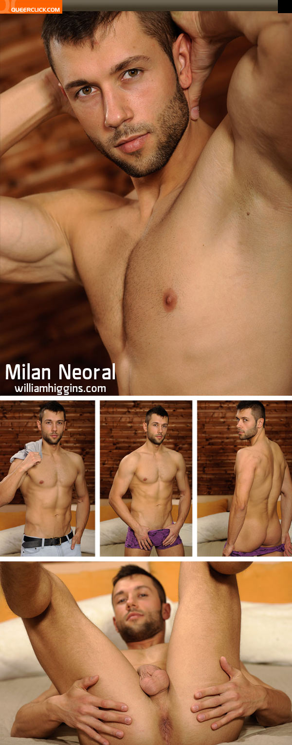william higgins milan neoral