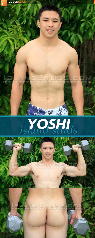 Island Studs: Yoshi