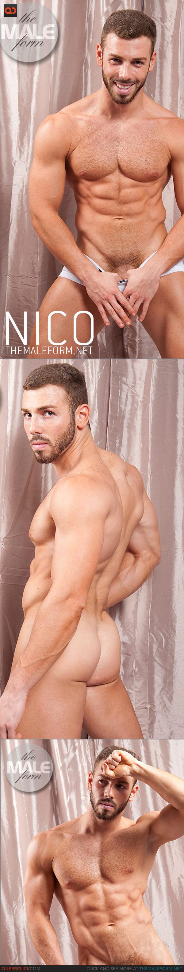 the male form nico