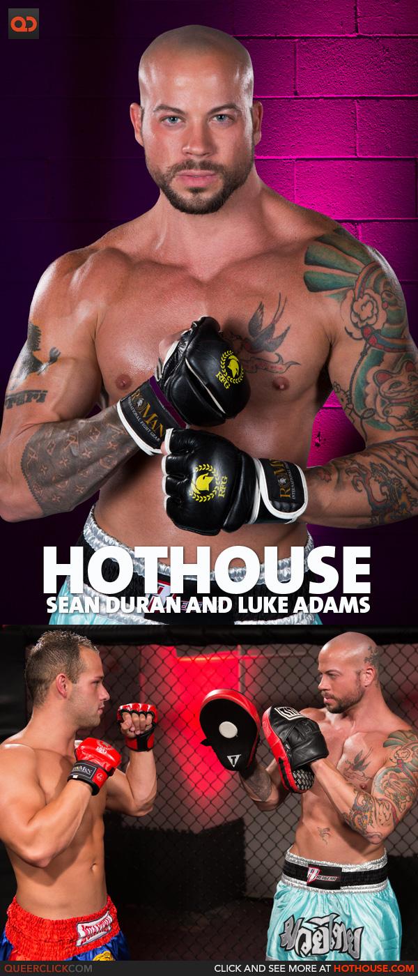 hothouse sean luke