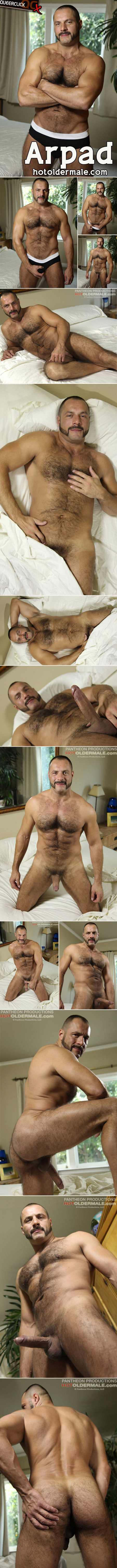 hot older male arpad miklos