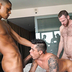 Tim Tales: Tim, Caio and Ian Torres