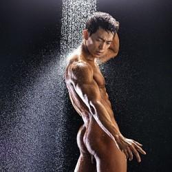 Amazing Muscle Studs