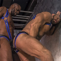 TitanMen: Diesel Washington Fucks Dallas Steele – ICONS