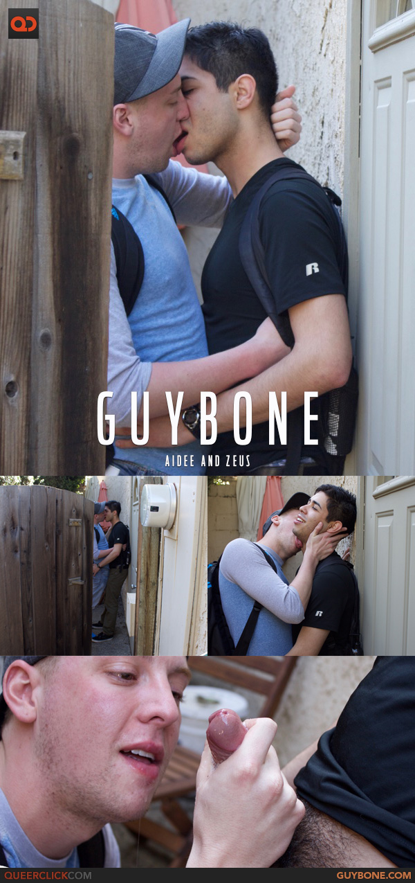 guybone-aidee-zeus