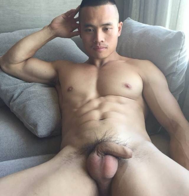 Hairy bear asians