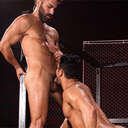 Raging Stallion: Bruno Bernal and Adam Ramzi