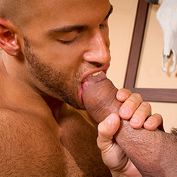 Hot House: Letterio Amadeo and Sean Zevran