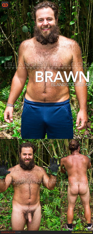 Island Studs: Brawn