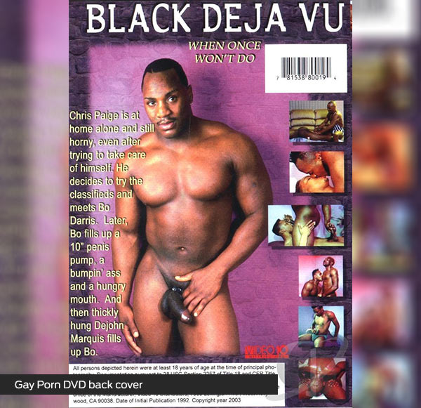 Gay-Porn-DVD-back-cover