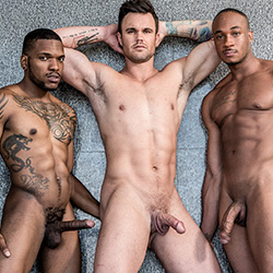 Noir Male: Trent King, Aaron Reese and Beau Reed