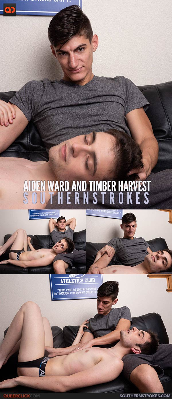 Southern Strokes: Aiden Ward and Timber Harvest